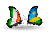 Butterflies with  Ireland and Rwanda flags on wings — 图库照片