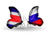 翼の上のロシアのフラグとコスタリカの蝶 — ストック写真