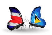 翼に、コスタリカとセントルシア フラグと蝶 — ストック写真