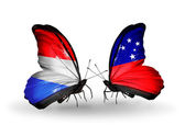 Butterflies with Luxembourg and Samoa flags on wings — 图库照片