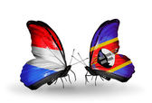 Butterflies with Luxembourg and Swaziland flags on wings — 图库照片