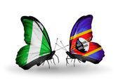 翼にナイジェリアとスワジランドのフラグと蝶 — ストック写真