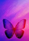 Sky with butterfly — Stock Photo