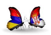 蝶の翼上のアルメニアとセルビアのフラグ — ストック写真