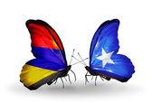 翼の上のアルメニアとソマリアのフラグと蝶 — ストック写真