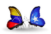 Butterflies with Venezuela and Somalia flags on wings — 图库照片