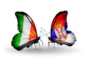 Butterflies with Ireland and  Serbia flags on wings — Stock Photo