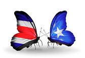 翼にソマリア フラグとコスタリカの蝶 — ストック写真