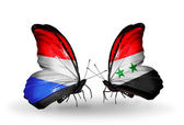 Butterflies with Luxembourg and  Syria flags on wings — 图库照片
