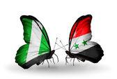 翼にナイジェリアとシリアのフラグと蝶 — ストック写真