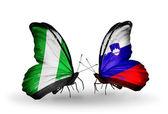 翼にナイジェリアとスロベニアのフラグと蝶 — ストック写真