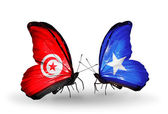 Butterflies with  Tunisia and Somalia flags on wings — Stock Photo