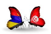 Motyle z armenii i tunezja flagi na skrzydłach — Zdjęcie stockowe