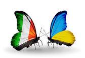 Kelebek kanatları üzerinde i̇rlanda ve ukrayna bayraklı — Stok fotoğraf