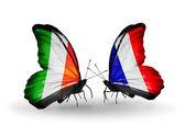 Kelebek kanatları üzerinde i̇rlanda ve fransa bayraklı — Stok fotoğraf