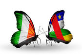 Butterflies with Ireland and  Central African Republic flags on wings — Stok fotoğraf