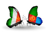 Butterflies with Ireland and  Eritrea flags on wings — Stock Photo
