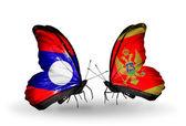 Kelebek kanatları üzerinde laos ve karadağ bayraklı — Stok fotoğraf