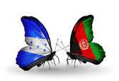 Farfalle con bandiere honduras e afghanistan sulle ali — Foto Stock
