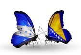 Butterflies with Honduras and Bosnia and Herzegovina flags on wings — Stock Photo