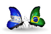 Butterflies with Honduras and Brazil flags on wings — Stock Photo