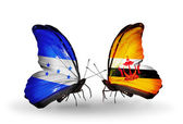 Butterflies with Honduras and Brunei flags on wings — Stock Photo
