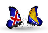 Butterflies with India and Bosnia and Herzegovina flags on wings — Stock Photo