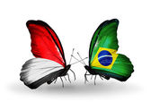 Butterflies with Monaco, Indonesia and Brazil flags on wings — Stock Photo