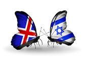 Motýli s příznaky islandu a izrael na křídlech — Stock fotografie