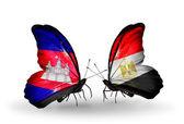 Motýli s příznaky kambodži a egypt na křídlech — Stock fotografie