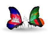 Motýli s příznaky kambodži a zambie na křídlech — Stock fotografie