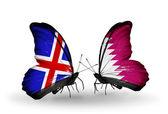 Motýli s příznaky islandu a katar na křídlech — Stock fotografie