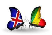 Motýli s příznaky islandu a kongo na křídlech — Stock fotografie