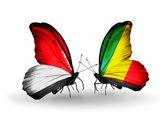 Motýli s příznaky monako, indonésie a kongo na křídlech — Stock fotografie
