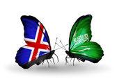 Motýli s příznaky islandu a saúdská arábie na křídlech — Stock fotografie