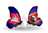 Motýli s kambodžou a svazijska příznaky na křídlech — Stock fotografie
