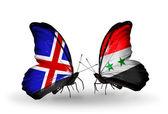 Papillons avec des drapeaux de l'islande et de la syrie sur les ailes — Photo