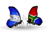 Butterflies with Honduras and  South Africa flags on wings — Stock Photo