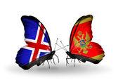 Papillons avec des drapeaux de l'islande- et -monténégro sur les ailes — Photo