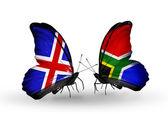 Papillons avec des drapeaux afrique du sud et de l'islande sur les ailes — Photo