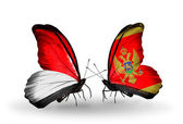 Butterflies with  Monaco, Indonesia and Montenegro flags on wings — Stock fotografie