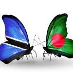 Постер, плакат: Butterflies with Botswana and Bangladesh flags