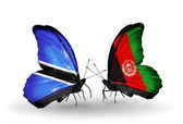Butterflies with Botswana and Afghanistan flags — Stock Photo