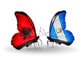 Butterflies with Albania and Guatemala flags — Stock Photo