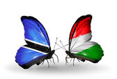 Butterflies with Botswana and Hungary flags — Stock Photo
