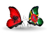 Butterflies with  Albania and Dominica flags — Stock Photo