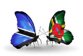 Butterflies with Botswana and Dominica flags — Stock Photo