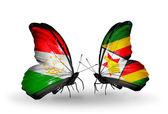 蝴蝶与塔吉克斯坦和津巴布韦的标志 — 图库照片