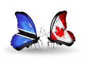 Butterflies with  Botswana and Canada flags — Stok fotoğraf