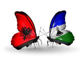 Butterflies with Albania and Lesotho flags — Stock Photo